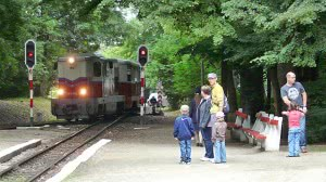 Személyvonat érkezik Csillebérc állomásra
