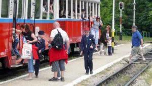 Passengers' service at Szepjuhaszne station